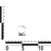 Хомут червячный 12-20мм, нержавейка, не перфорир. W2 (50 шт.) уп. 10661